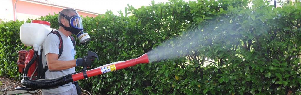 disinfestazione-insetti-volanti-zanzare