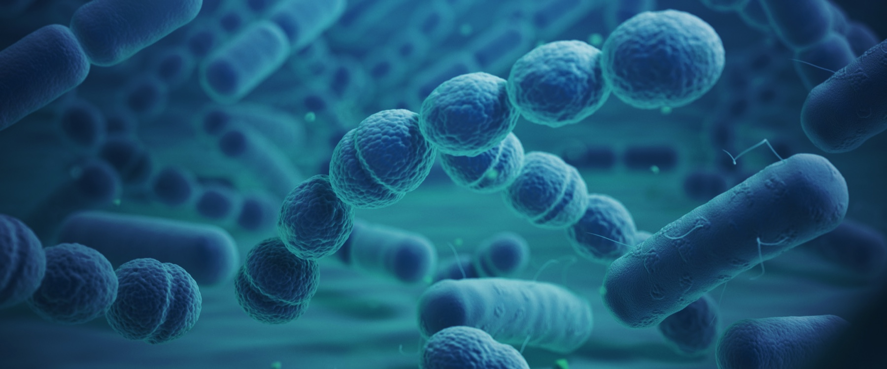 microorganismo microbo