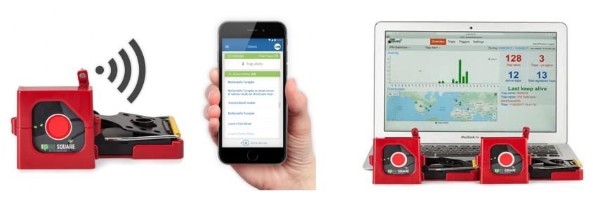 rilevazione roditori da web e app smartphone